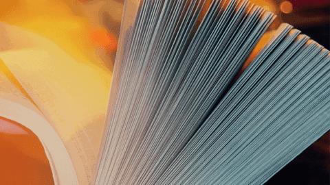 Materiais de estudo do Ensino Fundamental para o Encceja 2017